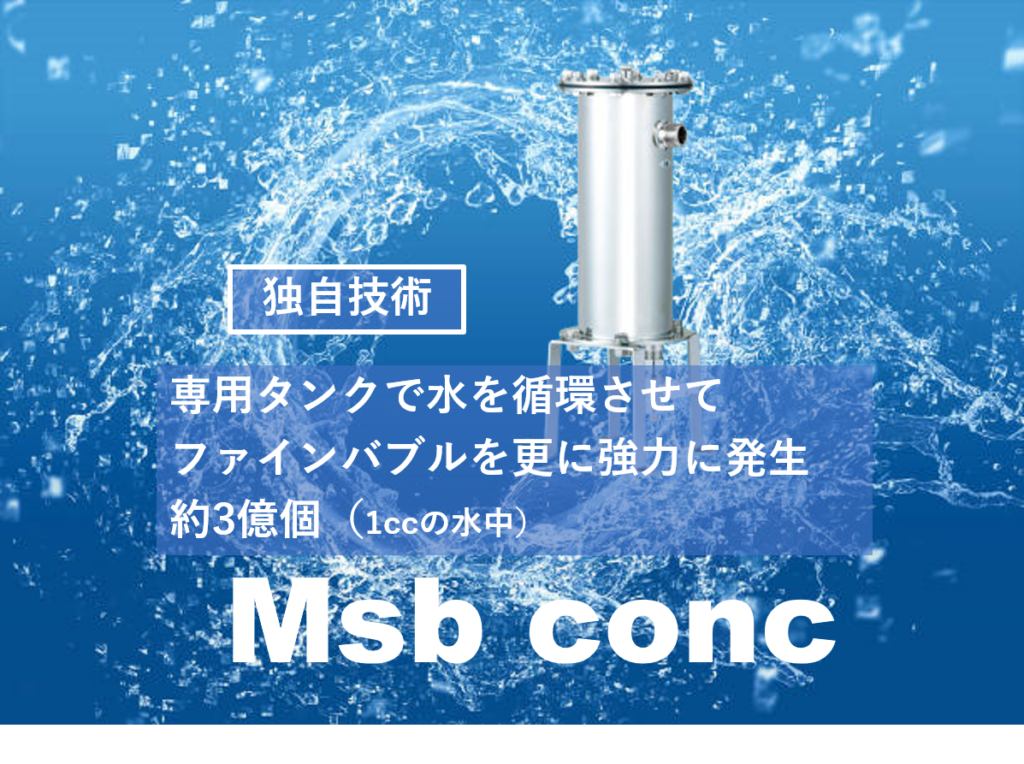 Msb conc
